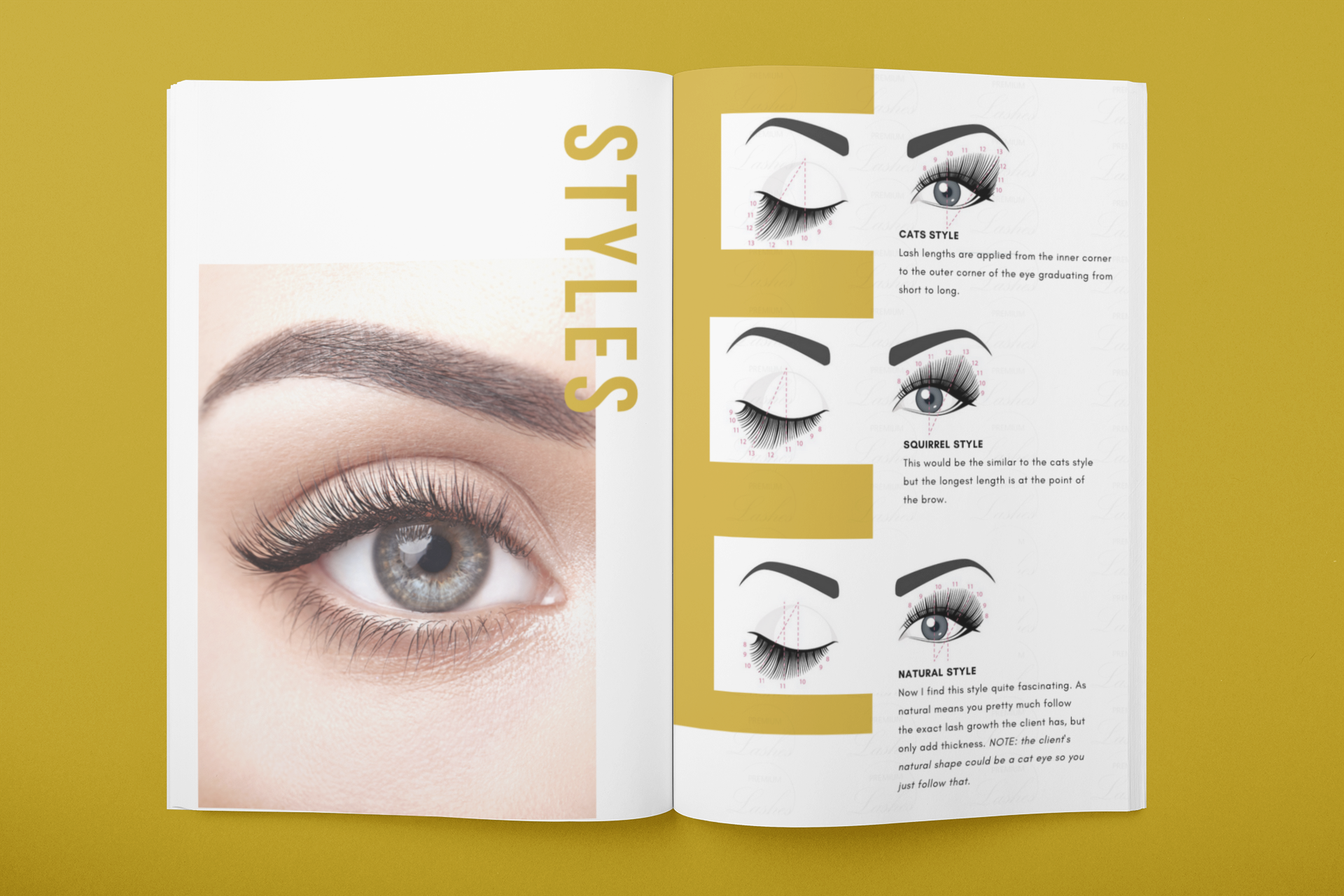 Premium Lashes inside ebook